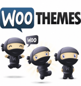 WOOTHEMES-331x355