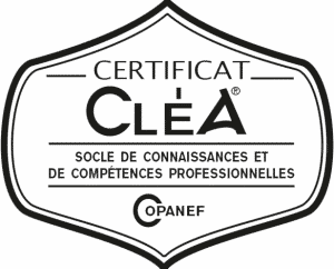 logo_clea transparent